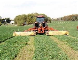 Cutting Alfalfa at Soaring Eagle Dairy